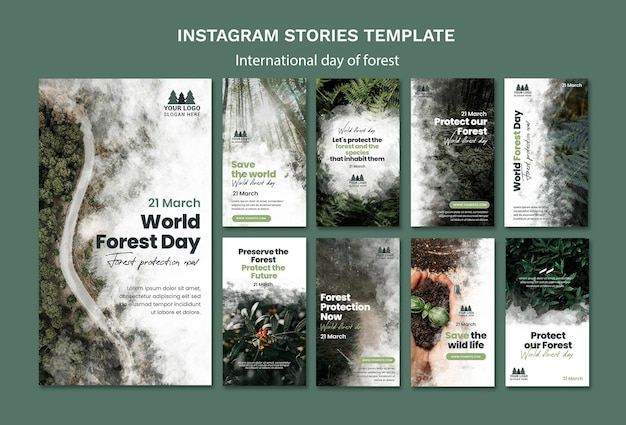 World forest day instagram stories template