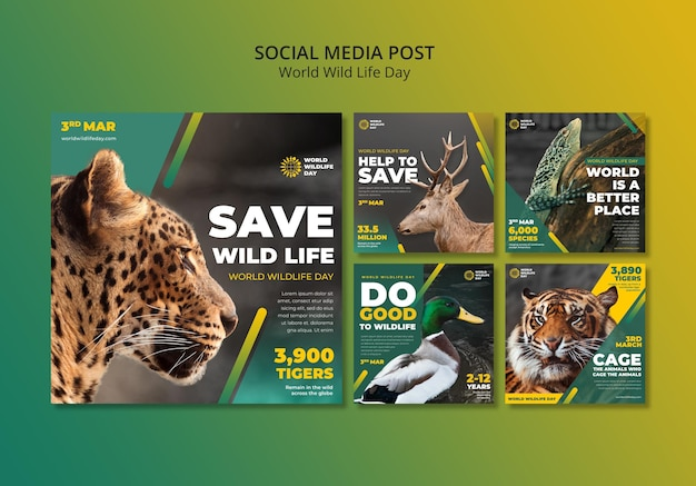 World wild life day instagram posts template