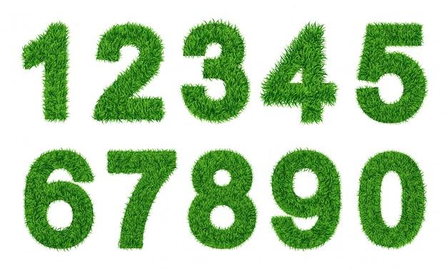 数字のコレクション緑の芝生がキャラクターを埋めました。 0から9、数字。ベクトルイラスト