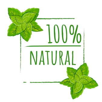 100 natural logo design. green eco stamp. color icon with leaves. flat illustration. isolated on white background.