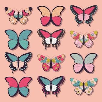 12カラフルな手描きの蝶、ピンクの背景のコレクション