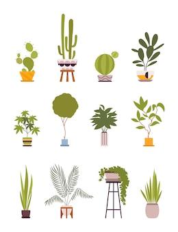 レトロなポットで12の緑の床植物のセット