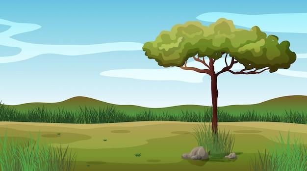 フィールドに1本の木がある背景シーン