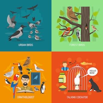 鳥2 x 2画像のコンセプト