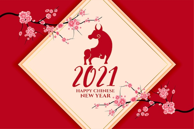 2021 chinese new year of the ox with sakura flower vector