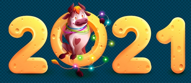 2021 is year of bull in chinese calendar. funny cute bull holding cheese 2021 number. cartoon illustration on transparent background