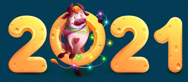 2021年は中国暦の雄牛の年です。チーズ2021番号を保持している面白いかわいい雄牛。透明な背景の上の漫画イラスト