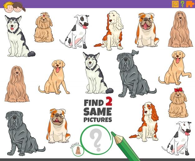 子供のための2つの同じ純血種の犬のタスクを見つける