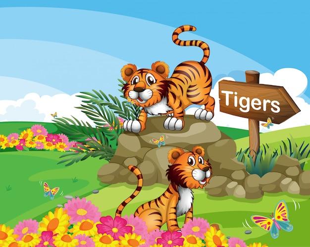 看板の横にある2つのトラ