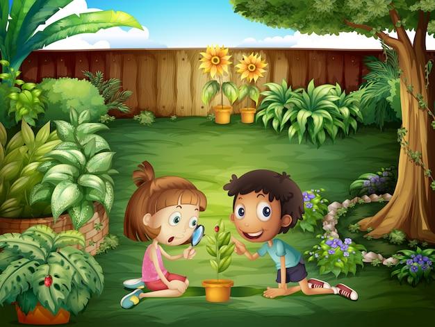 庭でてんとう虫を勉強している2人の愛らしい子供