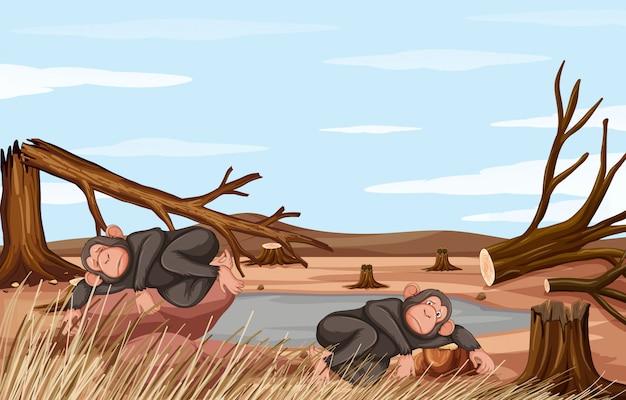 2匹のサルの森林伐採シーン
