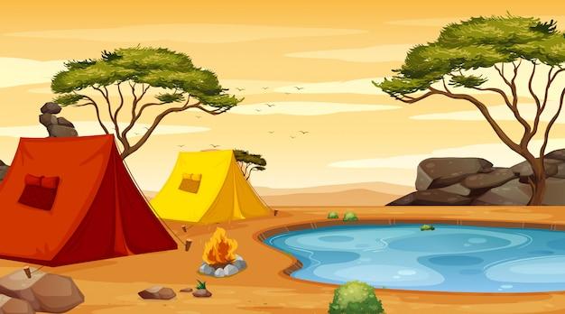 キャンプ場に2つのテントがあるシーン