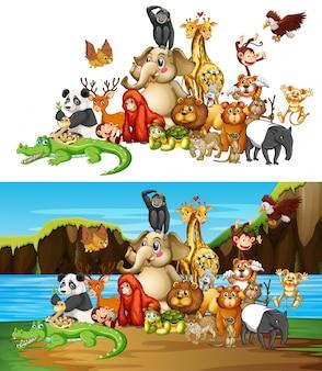 2つの異なる背景に多くの動物
