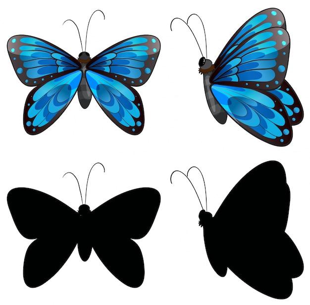 2つの位置にシルエットの蝶