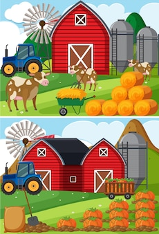 牛とカボチャのパッチを入れた2つの農場風景