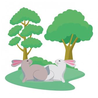 かわいい2匹のウサギの動物漫画