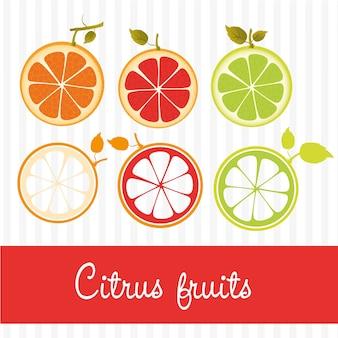 2種類の異なるスタイルの柑橘類にオレンジ