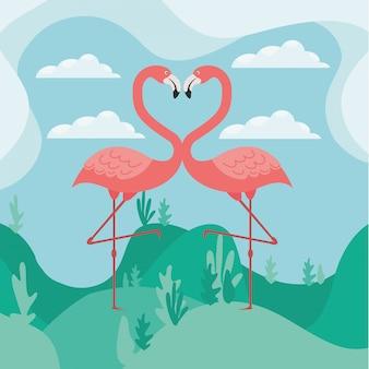 愛の2つのフラミンゴ