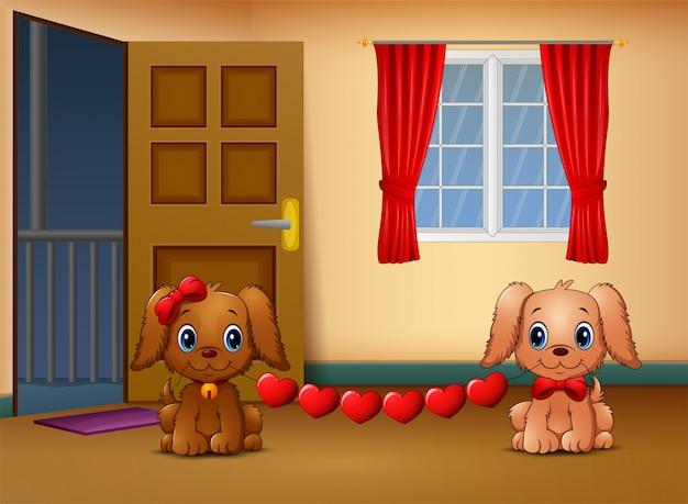 かわいい2匹の犬がリビングルームで心をかむ