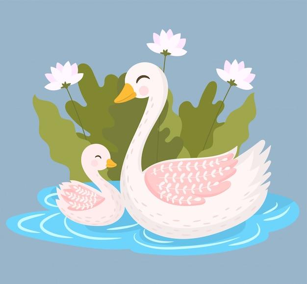 2つの白い白鳥、母と息子