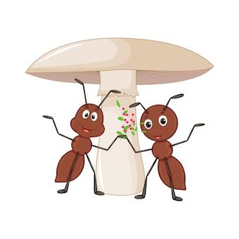 白い背景の上のキノコの近くの2つのアリ