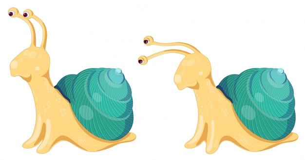 2つのベクトルカタツムリのセット