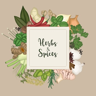 2d spices and herbs design background