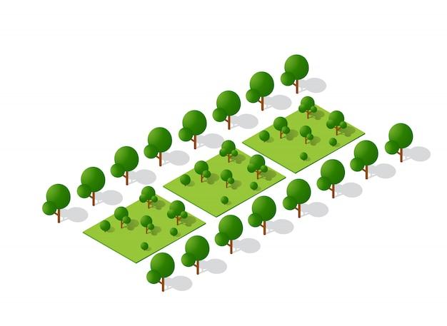 等尺性3 d木森林キャンプの自然の要素