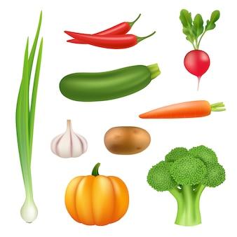 野菜のリアルな写真。健康的な生鮮食品カボチャブロッコリーキュウリコショウニンジン3 dイラスト