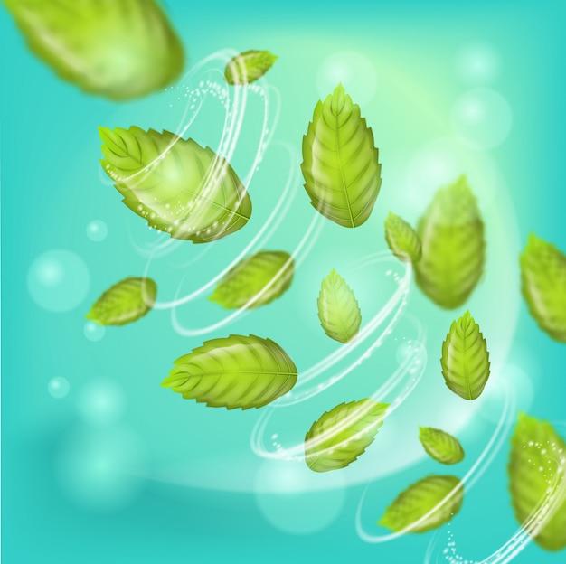 ミントの葉と3 dのリアルなイラスト渦