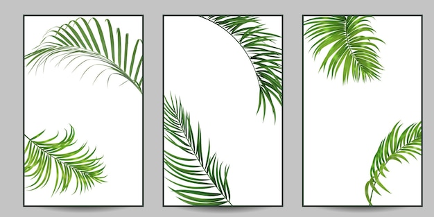 3 интерьерных плаката с пальмовыми листьями