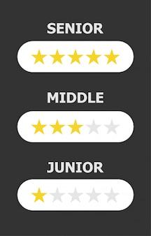 プログラマーの職業の3つのレベルは、暗い灰色の背景にある異なる数の星に反映されています。
