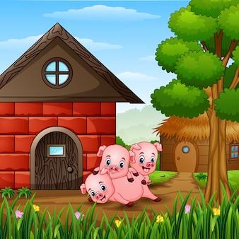 3匹の小さな豚が遊んでいる