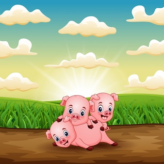 日の出のフィールドで遊ぶ3つの小さな豚を漫画します。