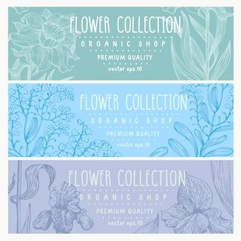 3つの花バナーの植物セット。