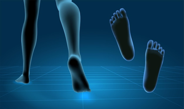 3d illustration,vector foot volume, health and shoe selection