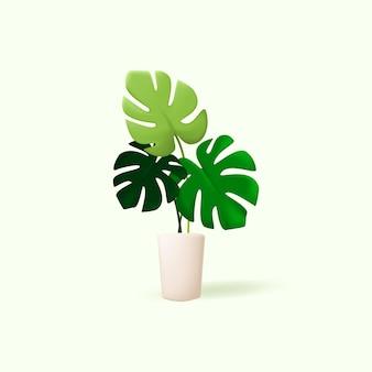 3dモンステラ植物イラスト