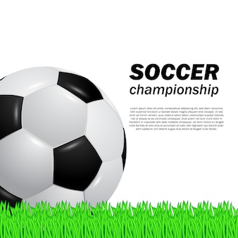 3d realistic ball soccer football on the green grass field