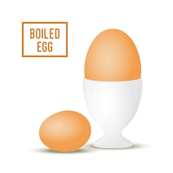 3d realistic egg in egg-cup