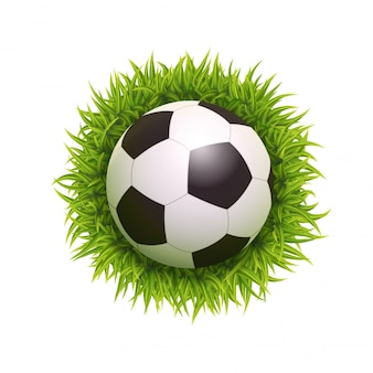 3d  realistic soccer ball on green grass illustration isolated. top view.