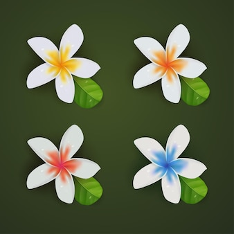 Набор для сбора плюмерии 3d реалистичный летний цветок