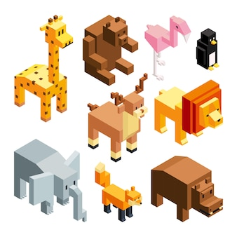3d toy animals, isometric pictures isolate