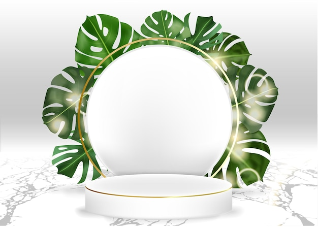 3d vector display white marble cylinder podium in white background decor by monstera leaves scene