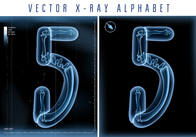 3d x-ray transparent alphabet use in logo or text. number five 5