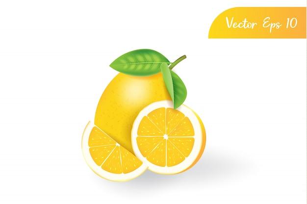 Свежий 3d реалистичный изолированный лимон