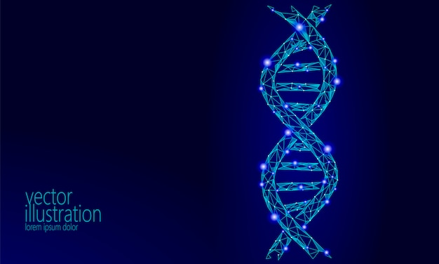 Днк 3d химическая структура молекулы низкополигональная, полигональная