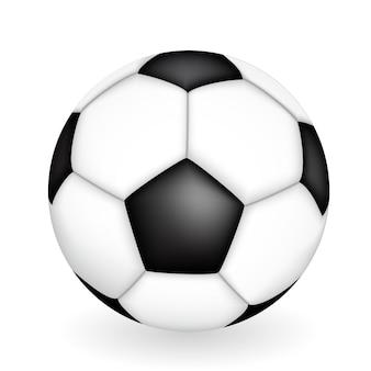 サッカーボールの自然な3dの種類。