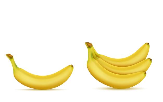 3d現実的な熱帯バナナセット。広告バナー、ポスターのための黄色のエキゾチックな甘いフルーツ