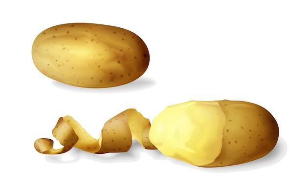 ポテトは、分離された現実的なジャガイモの野菜全体と半分の皮の3dを剥がした