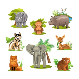 3d животных вектор шаблон вектор
